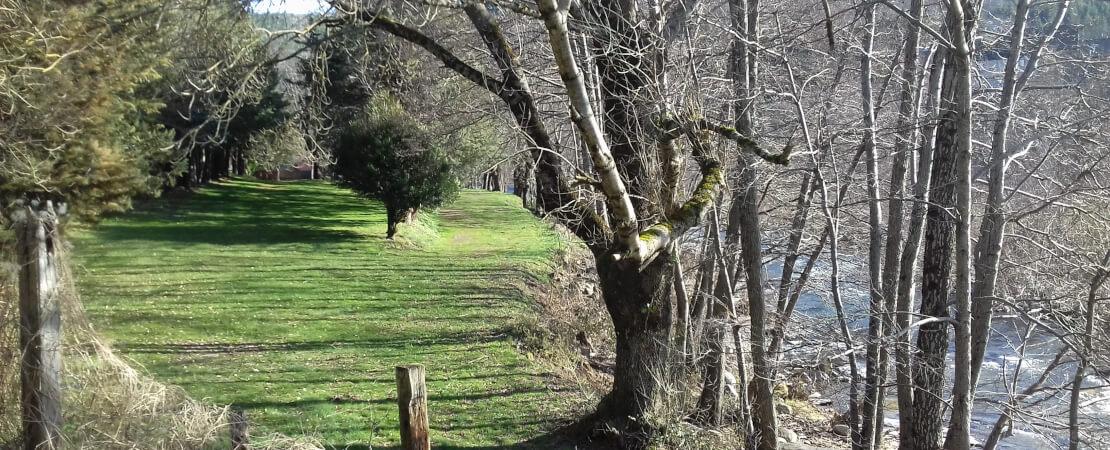 Naturnaher, ruhiger und familiärer Campingplatz am Ufer des Tarn