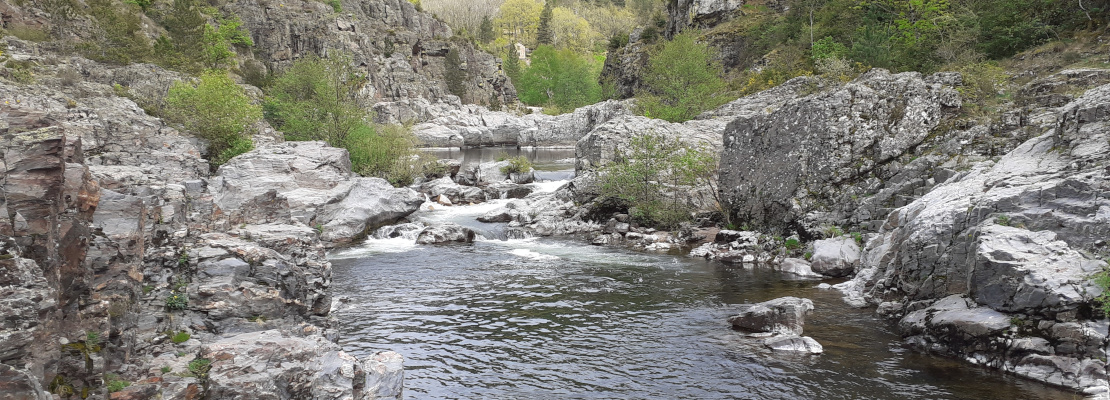 Rivière au camping
