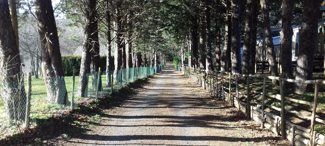 Chemin de Stevenson au camping