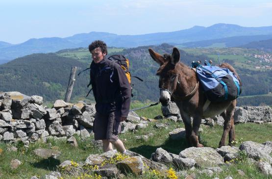 Randonneur avec son âne